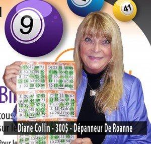 6nov16-collin-300-de-roanne